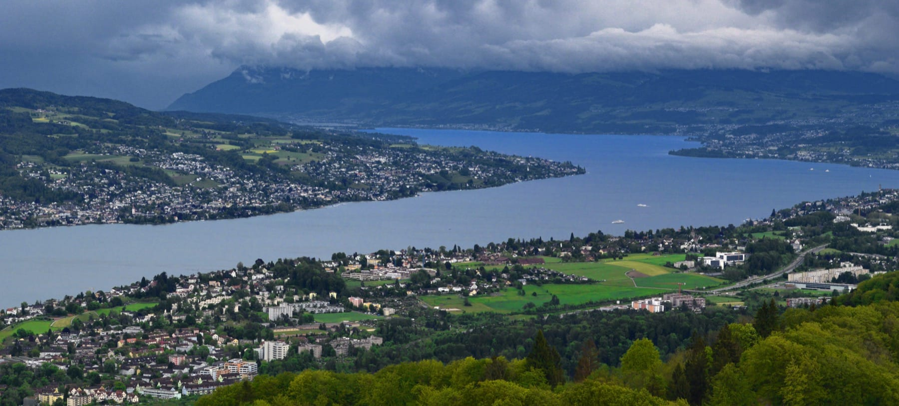 Zürichsee as seen from the top of the Üetliberg